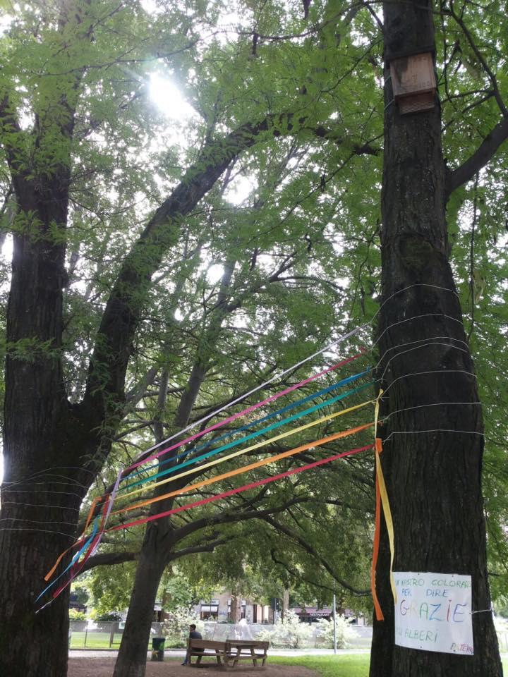 Un nastro colorato per dire Grazie agli alberi